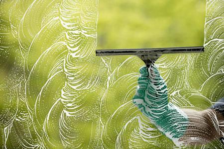 Wils Window Cleaning St. Petersburg Fl