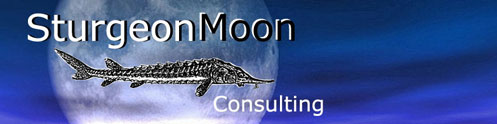 SturgeonMoon.com Business Consulting